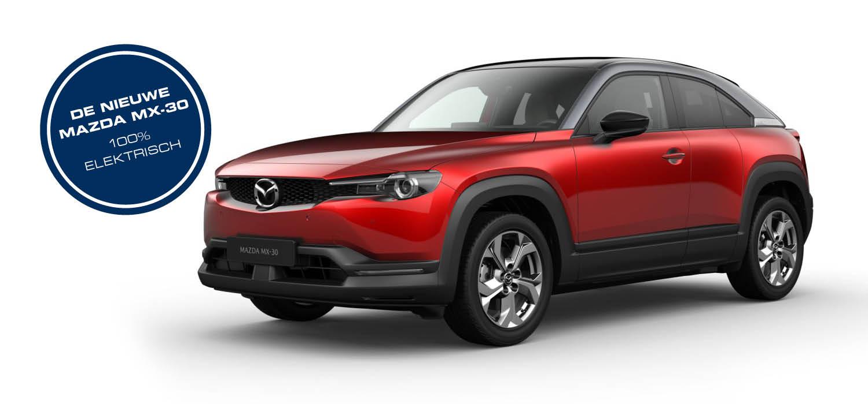 Mazda MX-30 Private Lease